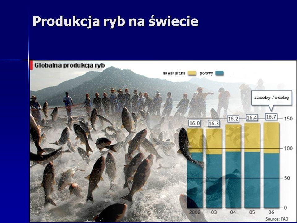 Produkcja ryb na świecie