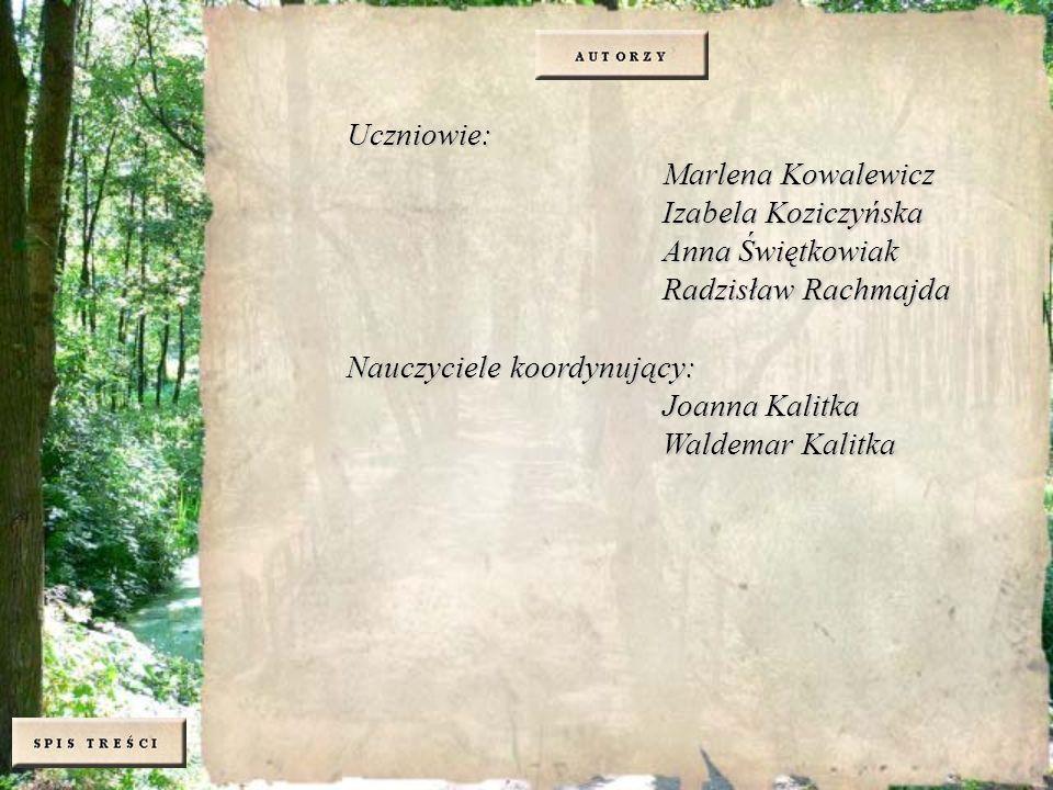 Uczniowie: Marlena Kowalewicz Izabela Koziczyńska Anna Świętkowiak Radzisław Rachmajda Nauczyciele koordynujący: Joanna Kalitka Waldemar Kalitka