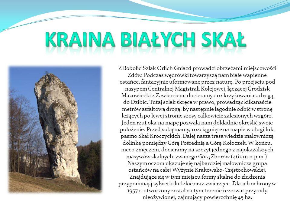 Z Bobolic Szlak Orlich Gniazd prowadzi obrzeżami miejscowości Zdów.