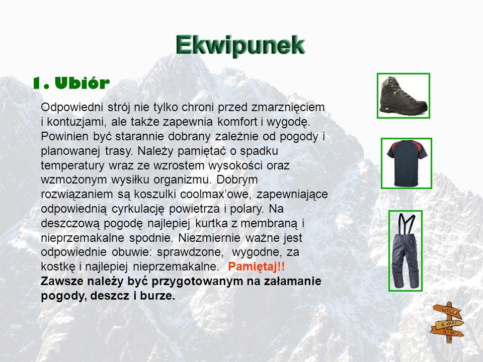 1. Ubiór Odpowiedni strój nie tylko chroni przed zmarznięciem i kontuzjami, ale także zapewnia komfort i wygodę. Powinien być starannie dobrany zależn