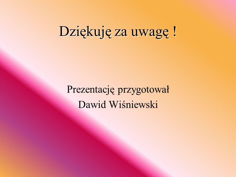 Dziękuję za uwagę ! Prezentację przygotował Dawid Wiśniewski