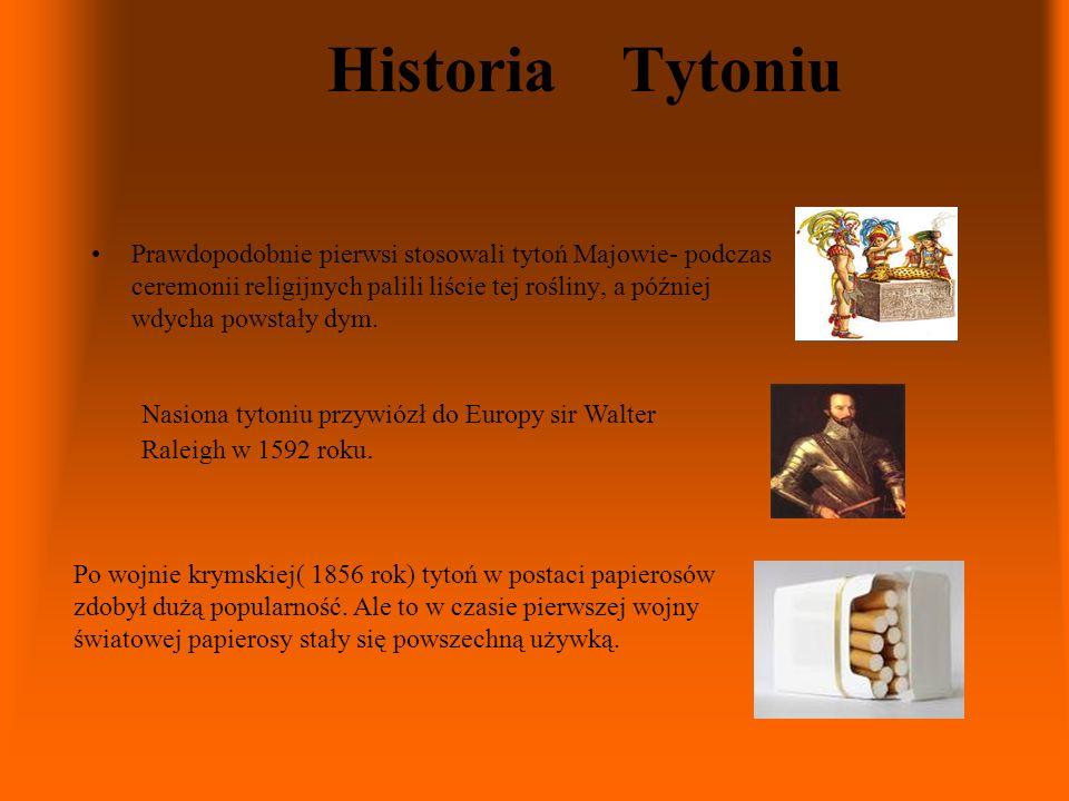 Historia Tytoniu Prawdopodobnie pierwsi stosowali tytoń Majowie- podczas ceremonii religijnych palili liście tej rośliny, a później wdycha powstały dy
