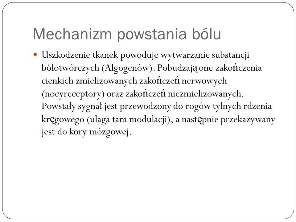 Mechanizm powstania bólu Uszkodzenie tkanek powoduje wytwarzanie substancji bólotwórczych (Algogenów). Pobudzaj ą one zako ń czenia cienkich zmielizow