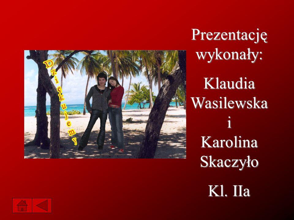 Prezentację wykonały: Klaudia Wasilewska i Karolina Skaczyło Kl. IIa