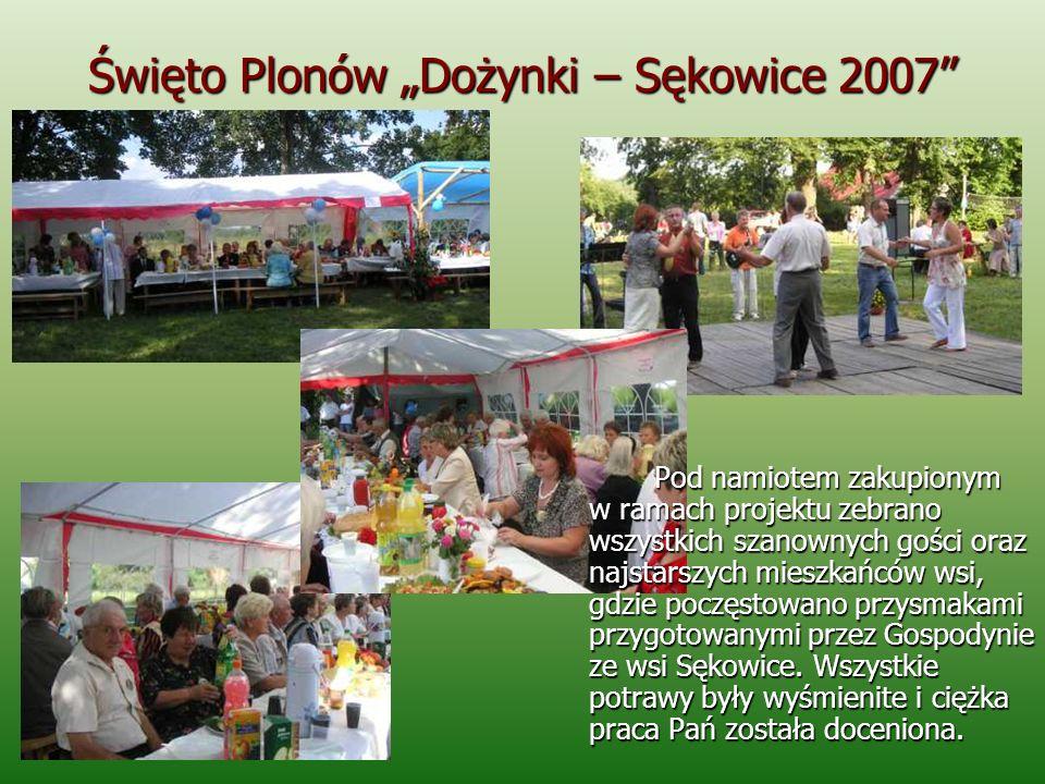 Święto Plonów Dożynki – Sękowice 2007 Organizatorzy zapewnili uczestnikom festynu mnóstwo atrakcji.