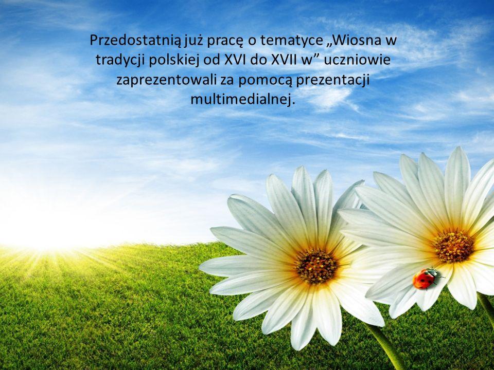 Przedostatnią już pracę o tematyce Wiosna w tradycji polskiej od XVI do XVII w uczniowie zaprezentowali za pomocą prezentacji multimedialnej.