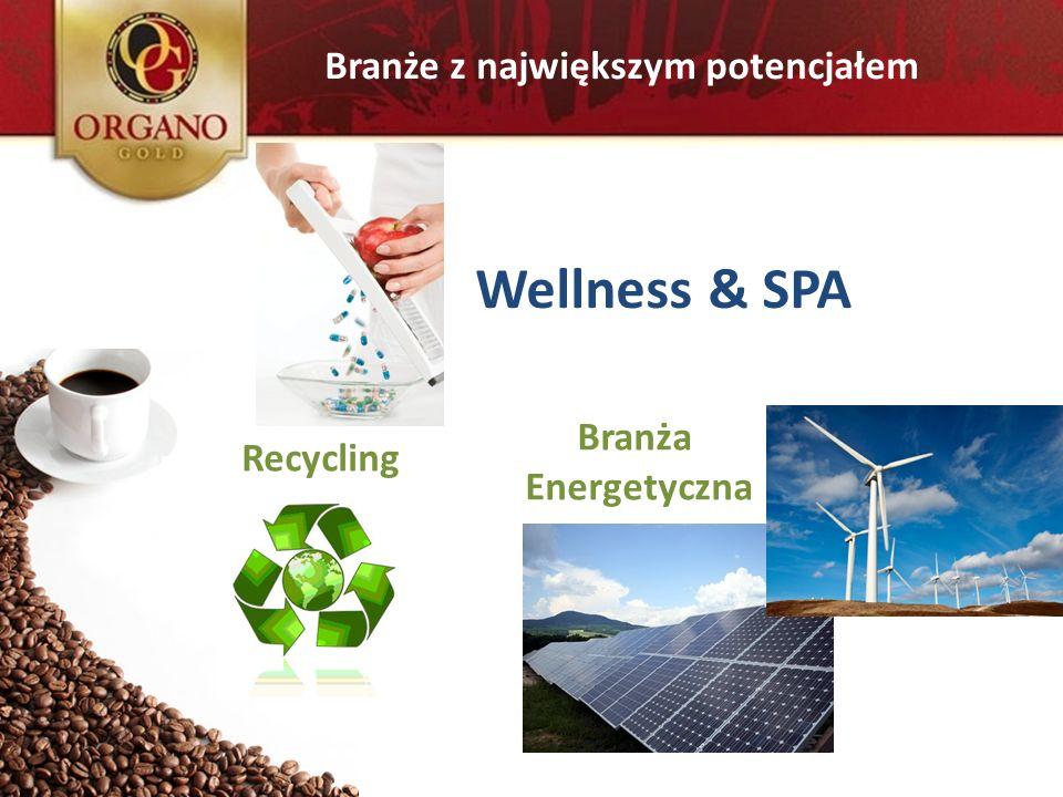 Branże z największym potencjałem Branża Energetyczna Recycling Wellness & SPA