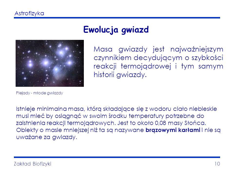 Astrofizyka Zakład Biofizyki10 Ewolucja gwiazd Plejady - młode gwiazdy Masa gwiazdy jest najważniejszym czynnikiem decydującym o szybkości reakcji ter