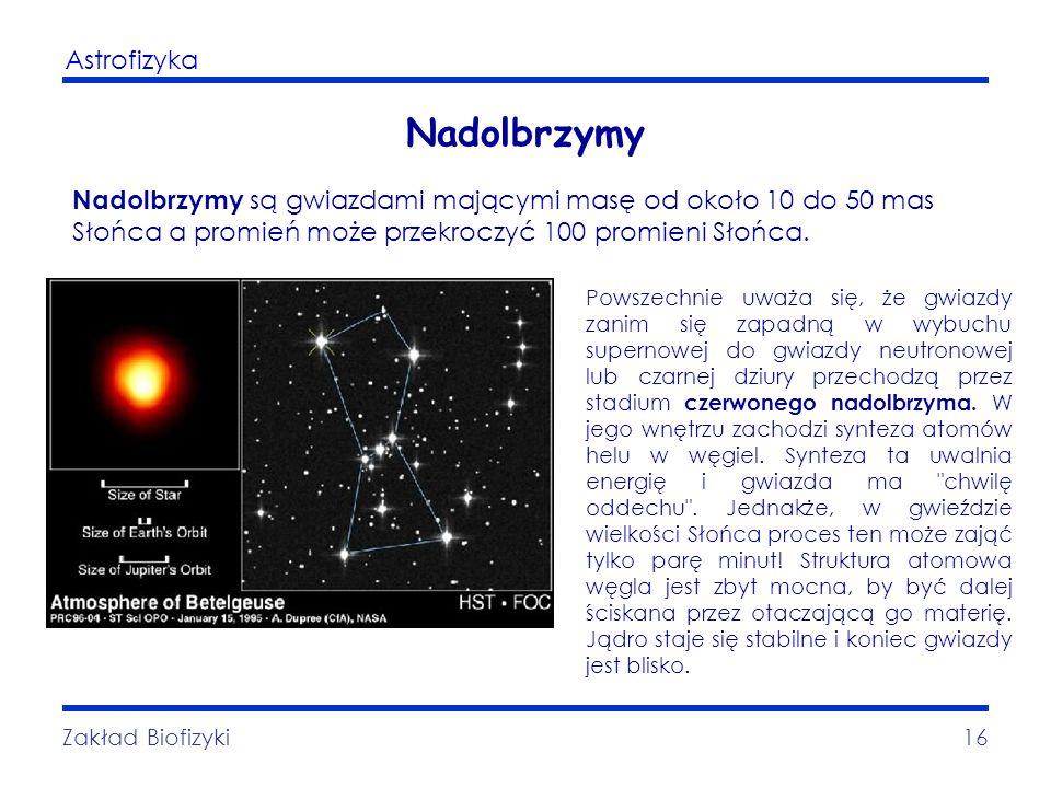 Astrofizyka Zakład Biofizyki16 Nadolbrzymy Nadolbrzymy są gwiazdami mającymi masę od około 10 do 50 mas Słońca a promień może przekroczyć 100 promieni