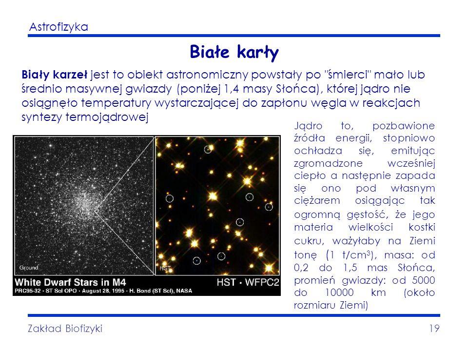 Astrofizyka Zakład Biofizyki19 Białe karły Biały karzeł jest to obiekt astronomiczny powstały po