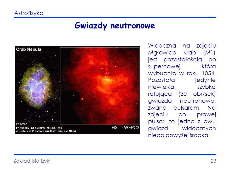 Astrofizyka Zakład Biofizyki23 Gwiazdy neutronowe Widoczna na zdjęciu Mgławica Krab (M1) jest pozostałością po supernowej, która wybuchła w roku 1054.