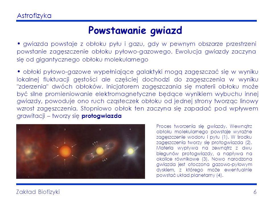 Astrofizyka Zakład Biofizyki6 Powstawanie gwiazd gwiazda powstaje z obłoku pyłu i gazu, gdy w pewnym obszarze przestrzeni powstanie zagęszczenie obłok