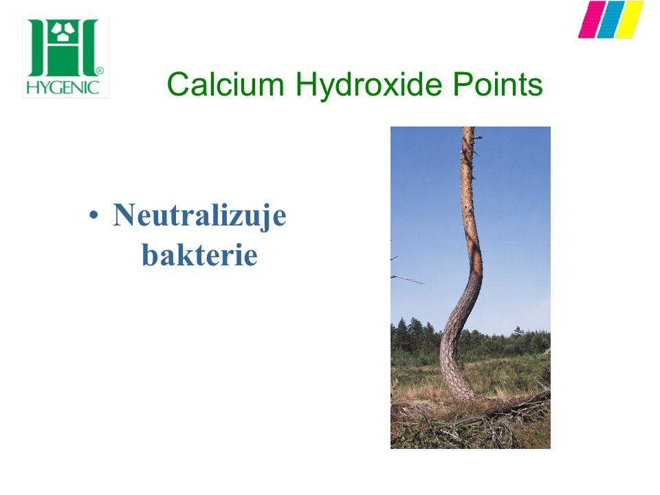 Calcium Hydroxide Points Neutralizuje bakterie