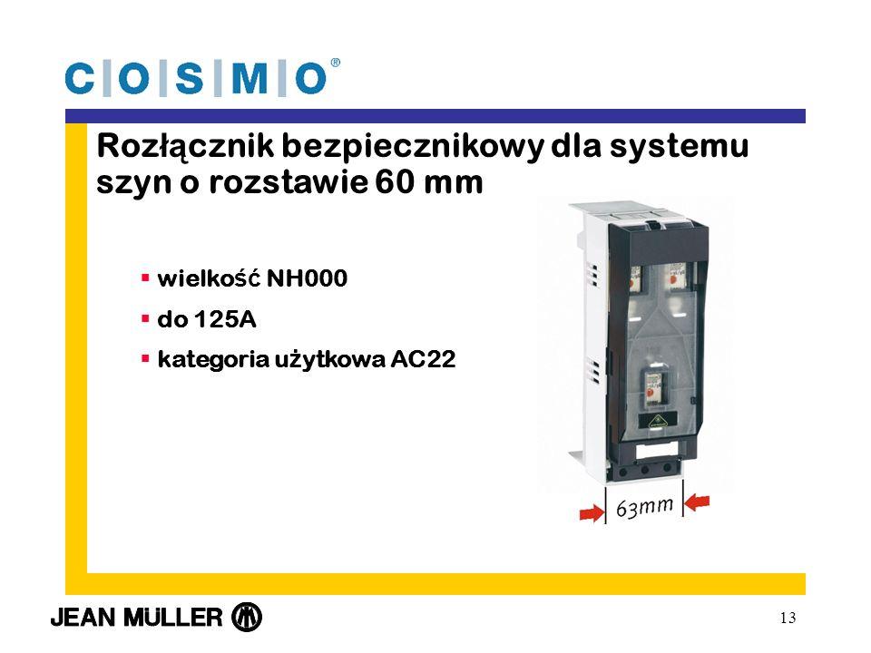13 Roz łą cznik bezpiecznikowy dla systemu szyn o rozstawie 60 mm wielko ść NH000 do 125A kategoria u ż ytkowa AC22