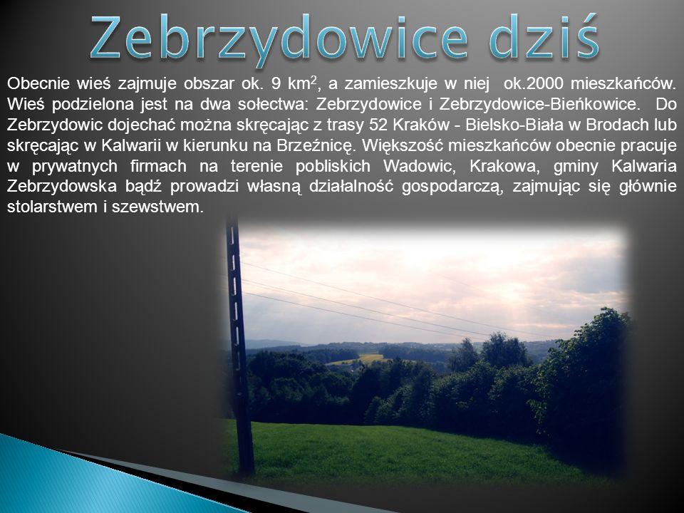 Obecnie wieś zajmuje obszar ok. 9 km 2, a zamieszkuje w niej ok.2000 mieszkańców. Wieś podzielona jest na dwa sołectwa: Zebrzydowice i Zebrzydowice-Bi
