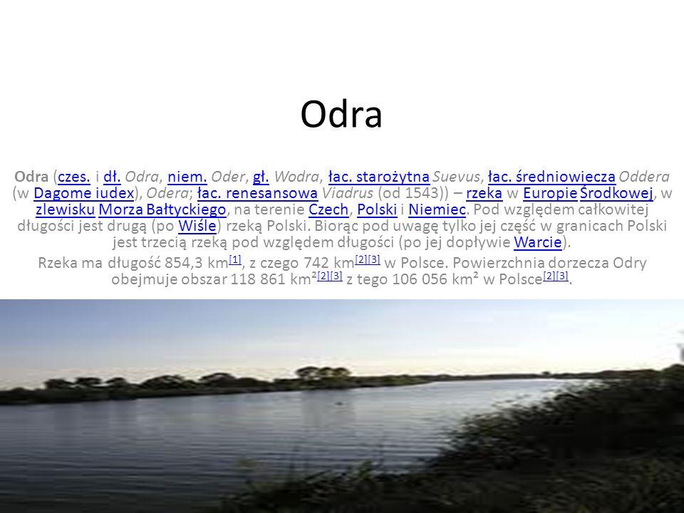 Bug Odra (czes.i dł. Odra, niem. Oder, gł. Wodra, łac.