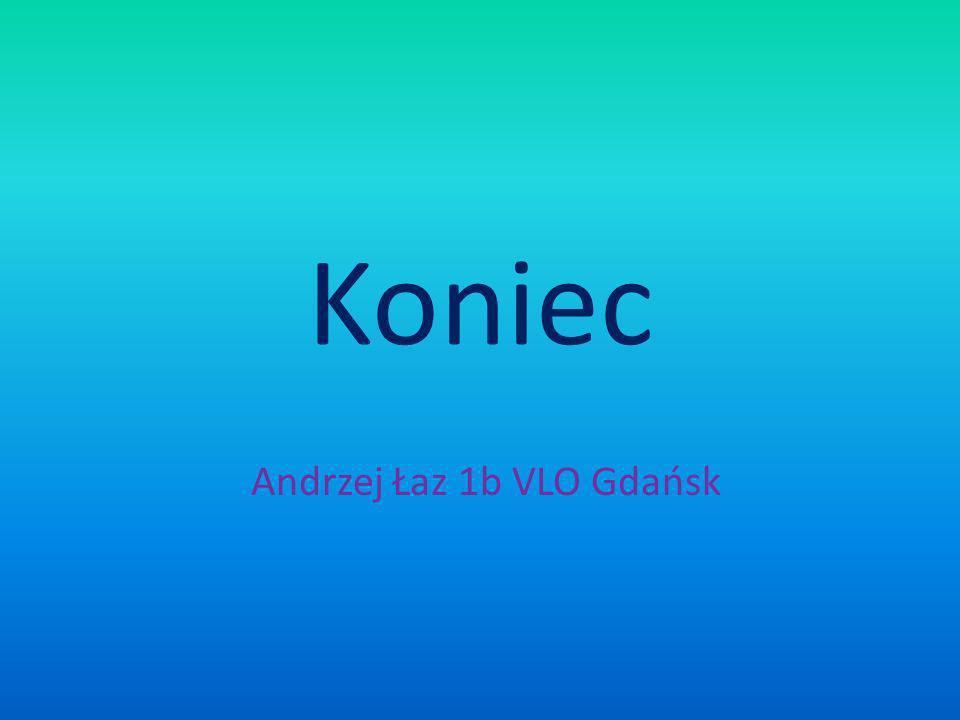 Koniec Andrzej Łaz 1b VLO Gdańsk