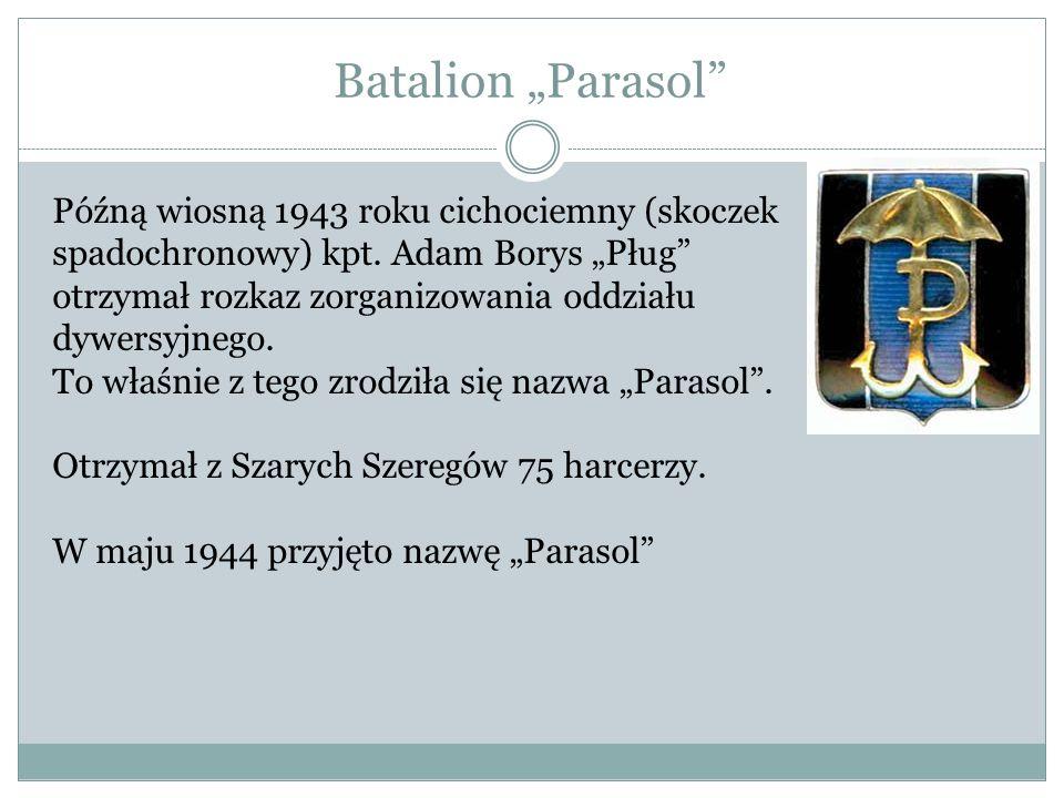 Batalion Zośka, utworzony pod koniec sierpnia 1943, przyjął nazwę Zośka dla upamiętnienia postaci dowódcy warszawskich Grup Szturmowych, Tadeusza Zawadzkiego Zośki (poległego w akcji na posterunek graniczny w Sieczychach).