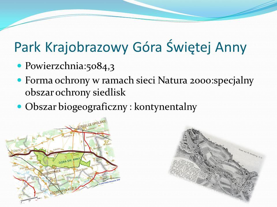 Park Krajobrazowy Góra Świętej Anny Powierzchnia:5084,3 Forma ochrony w ramach sieci Natura 2000:specjalny obszar ochrony siedlisk Obszar biogeograficzny : kontynentalny