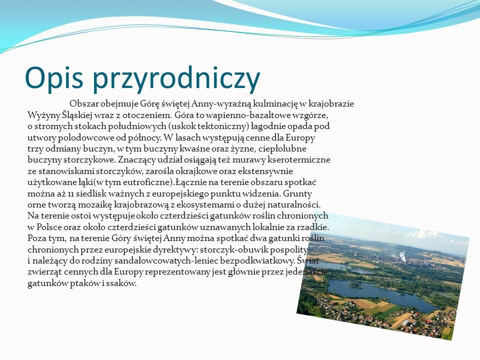 Opis przyrodniczy Obszar obejmuje Górę świętej Anny-wyraźną kulminację w krajobrazie Wyżyny Śląskiej wraz z otoczeniem.