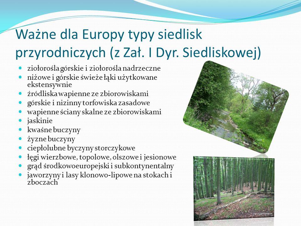 Ważne dla Europy typy siedlisk przyrodniczych (z Zał.