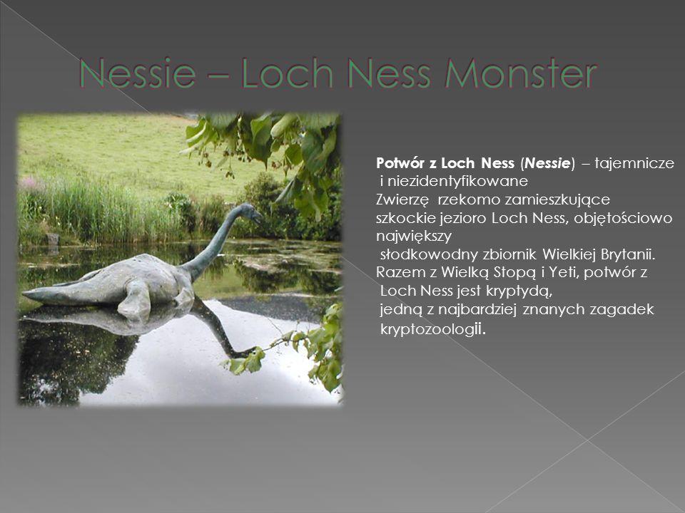 Potwór z Loch Ness ( Nessie ) – tajemnicze i niezidentyfikowane Zwierzę rzekomo zamieszkujące szkockie jezioro Loch Ness, objętościowo największy słod