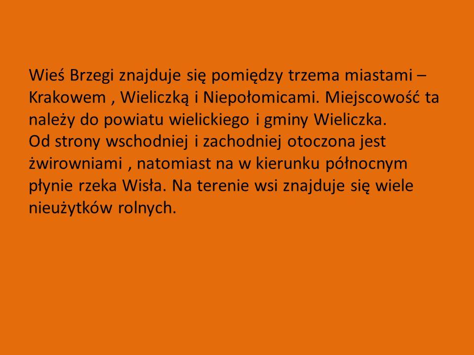 Wieś Brzegi znajduje się pomiędzy trzema miastami – Krakowem, Wieliczką i Niepołomicami.