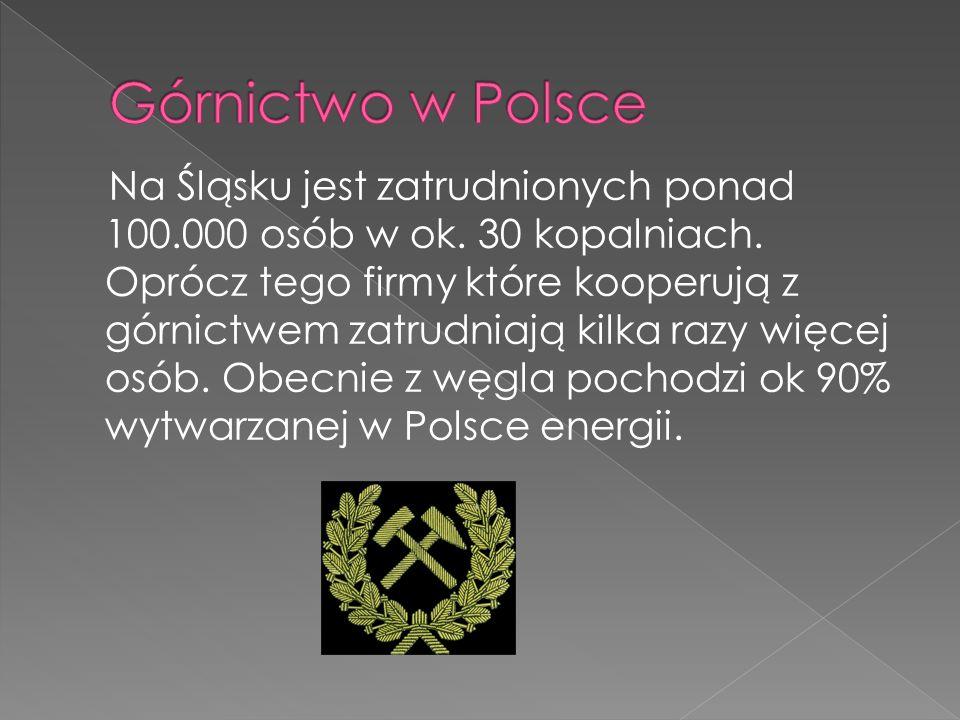 Na Śląsku jest zatrudnionych ponad 100.000 osób w ok. 30 kopalniach. Oprócz tego firmy które kooperują z górnictwem zatrudniają kilka razy więcej osób