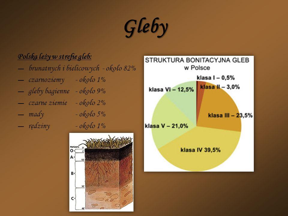 Gleby Polska leży w strefie gleb: brunatnych i bielicowych - około 82% czarnoziemy- około 1% gleby bagienne- około 9% czarne ziemie- około 2% mady- ok