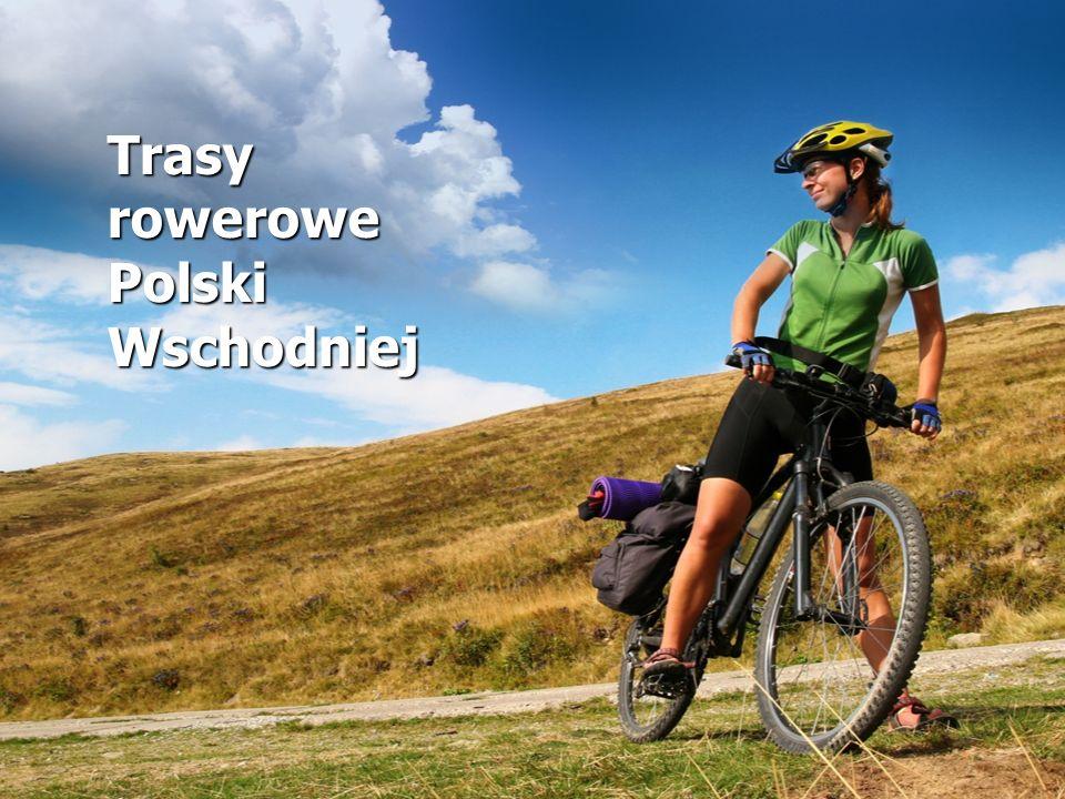 przejazd pod mostem Siwca ul.22-go Stycznia, Wybrzeże kładka pieszo-rowerowa ul.
