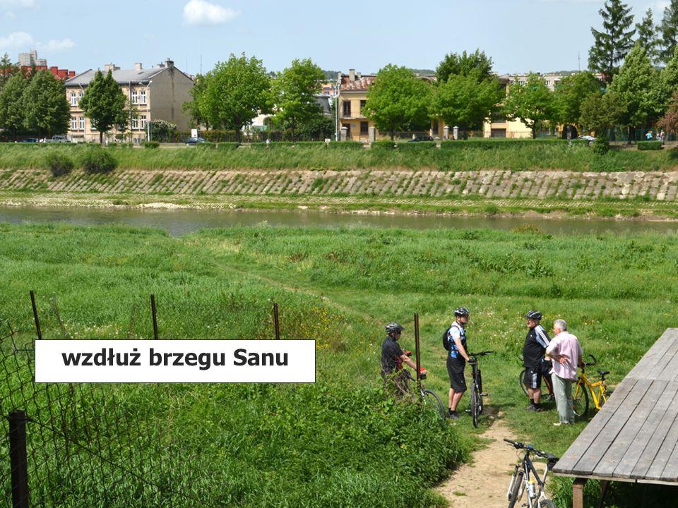 wzdłuż brzegu Sanu