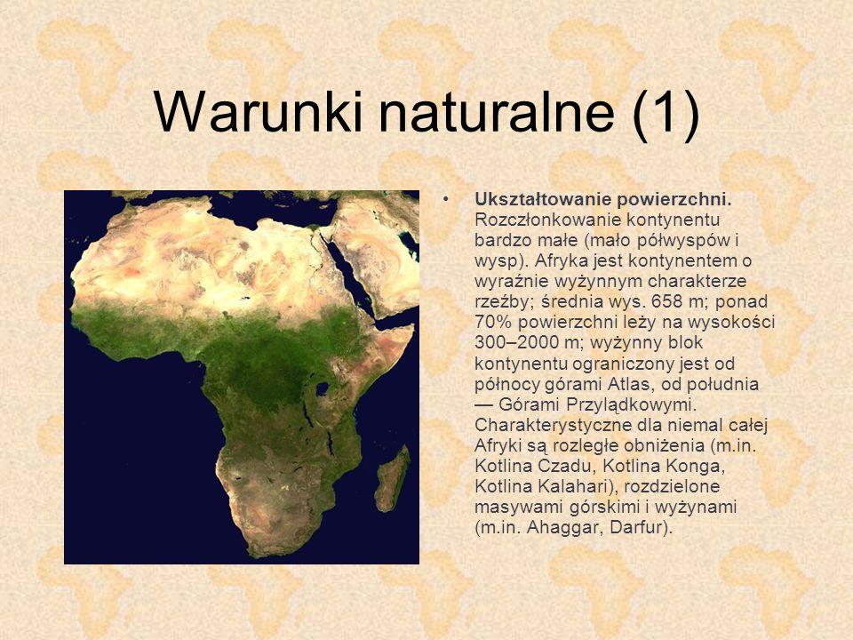 Warunki naturalne (1) Ukształtowanie powierzchni. Rozczłonkowanie kontynentu bardzo małe (mało półwyspów i wysp). Afryka jest kontynentem o wyraźnie w