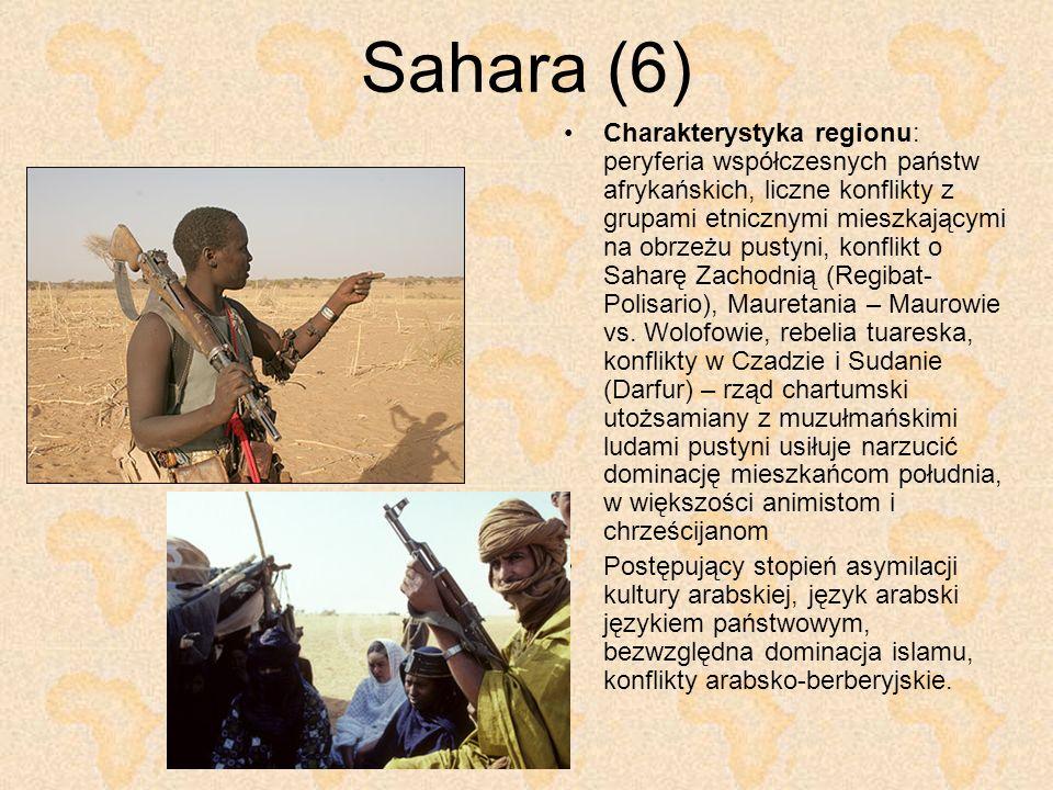 Sahara (6) Charakterystyka regionu: peryferia współczesnych państw afrykańskich, liczne konflikty z grupami etnicznymi mieszkającymi na obrzeżu pustyn