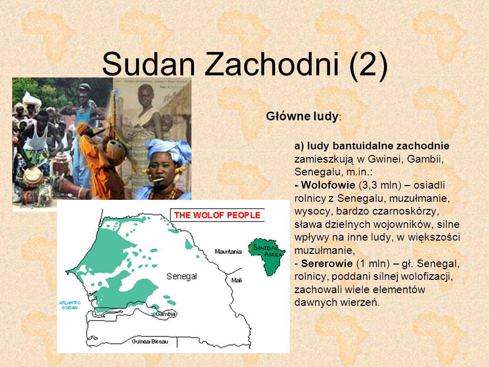 Sudan Zachodni (2) Główne ludy : a) ludy bantuidalne zachodnie zamieszkują w Gwinei, Gambii, Senegalu, m.in.: - Wolofowie (3,3 mln) – osiadli rolnicy
