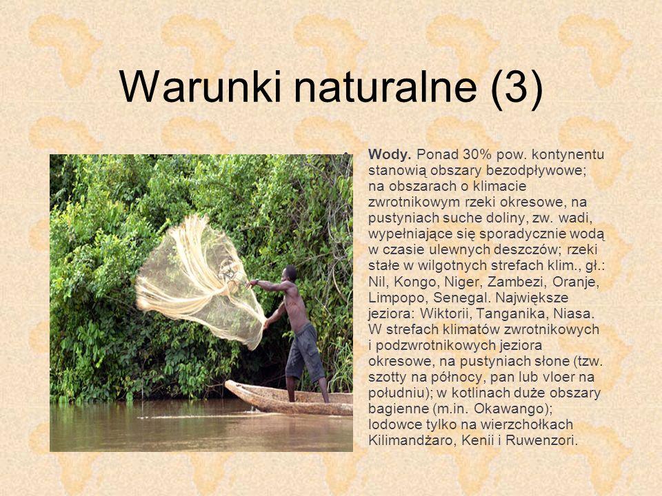 Warunki naturalne (4) Świat roślinny.