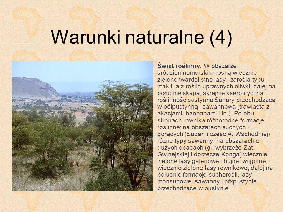 Warunki naturalne (5) Świat zwierzęcy.