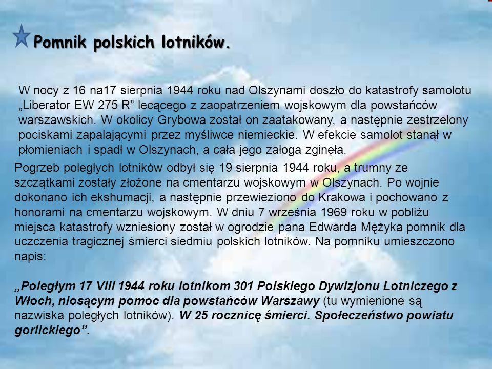 Pomnik polskich lotników. W nocy z 16 na17 sierpnia 1944 roku nad Olszynami doszło do katastrofy samolotu Liberator EW 275 R lecącego z zaopatrzeniem