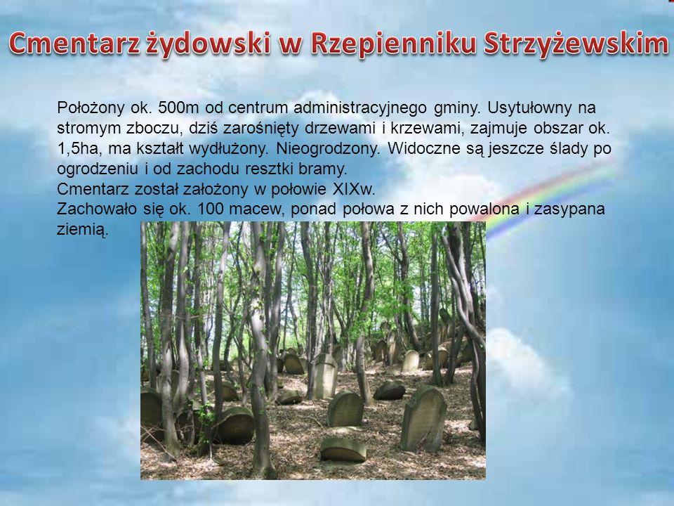 Położony ok. 500m od centrum administracyjnego gminy. Usytułowny na stromym zboczu, dziś zarośnięty drzewami i krzewami, zajmuje obszar ok. 1,5ha, ma