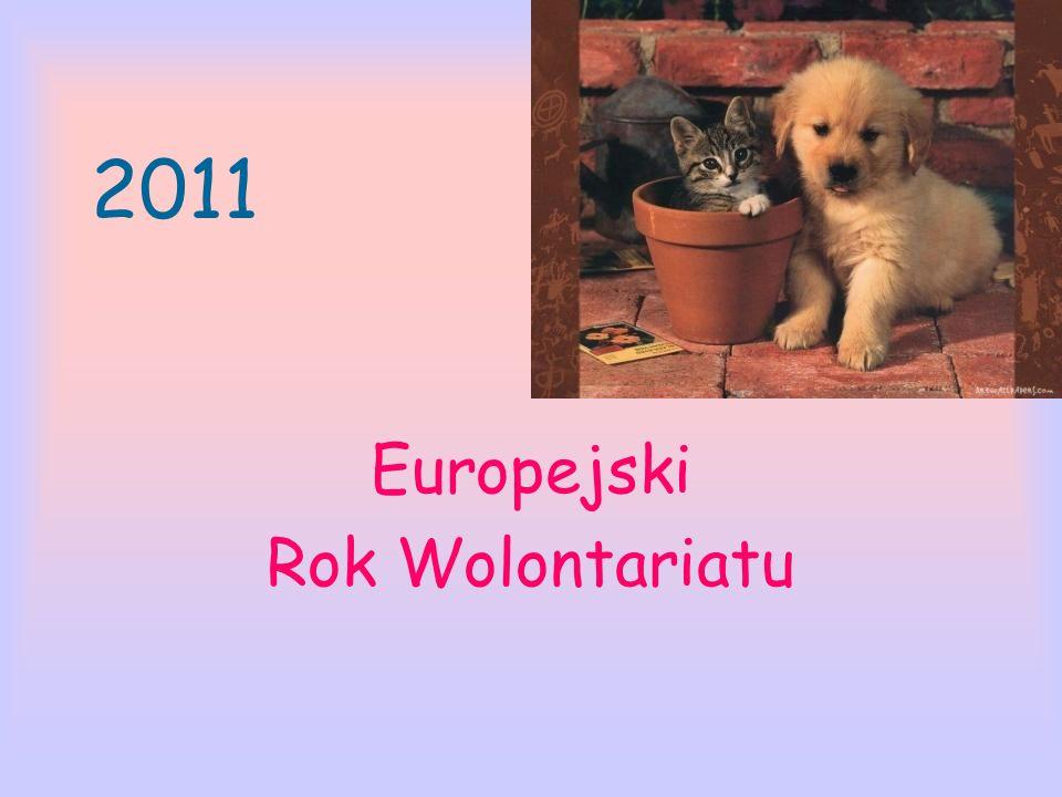 2011 Europejski Rok Wolontariatu