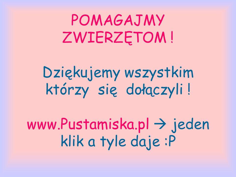 POMAGAJMY ZWIERZĘTOM ! Dziękujemy wszystkim którzy się dołączyli ! www.Pustamiska.pl jeden klik a tyle daje :P