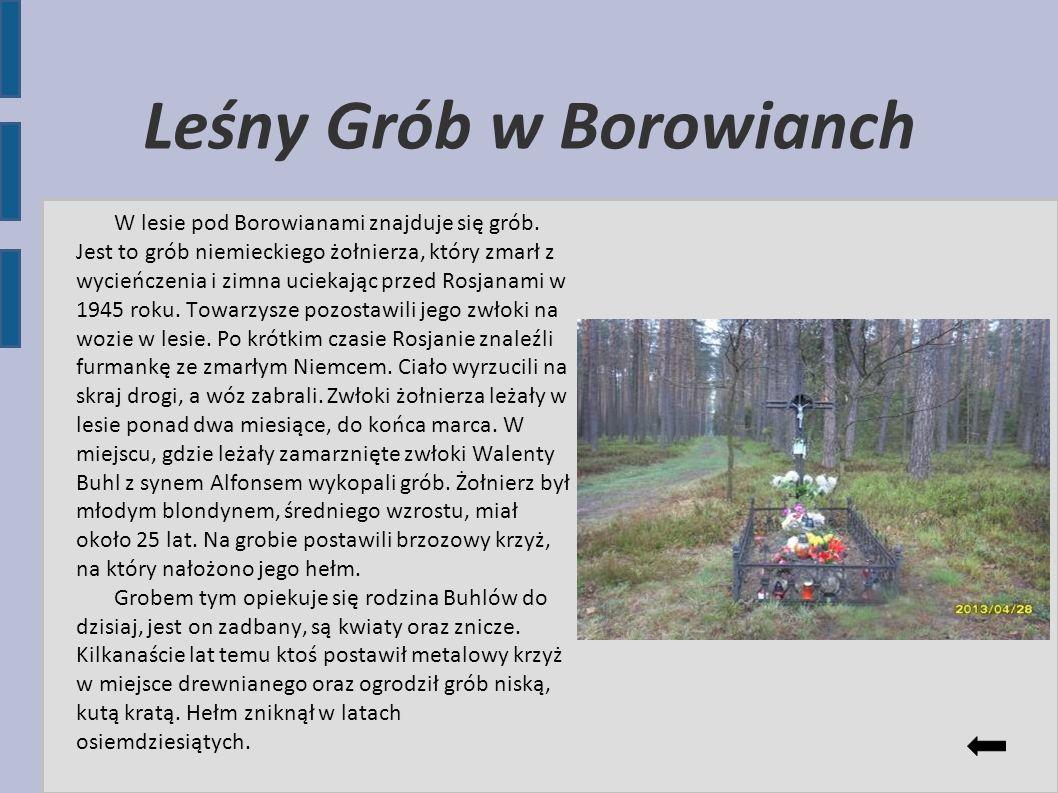 Leśny Grób w Borowianch W lesie pod Borowianami znajduje się grób. Jest to grób niemieckiego żołnierza, który zmarł z wycieńczenia i zimna uciekając p