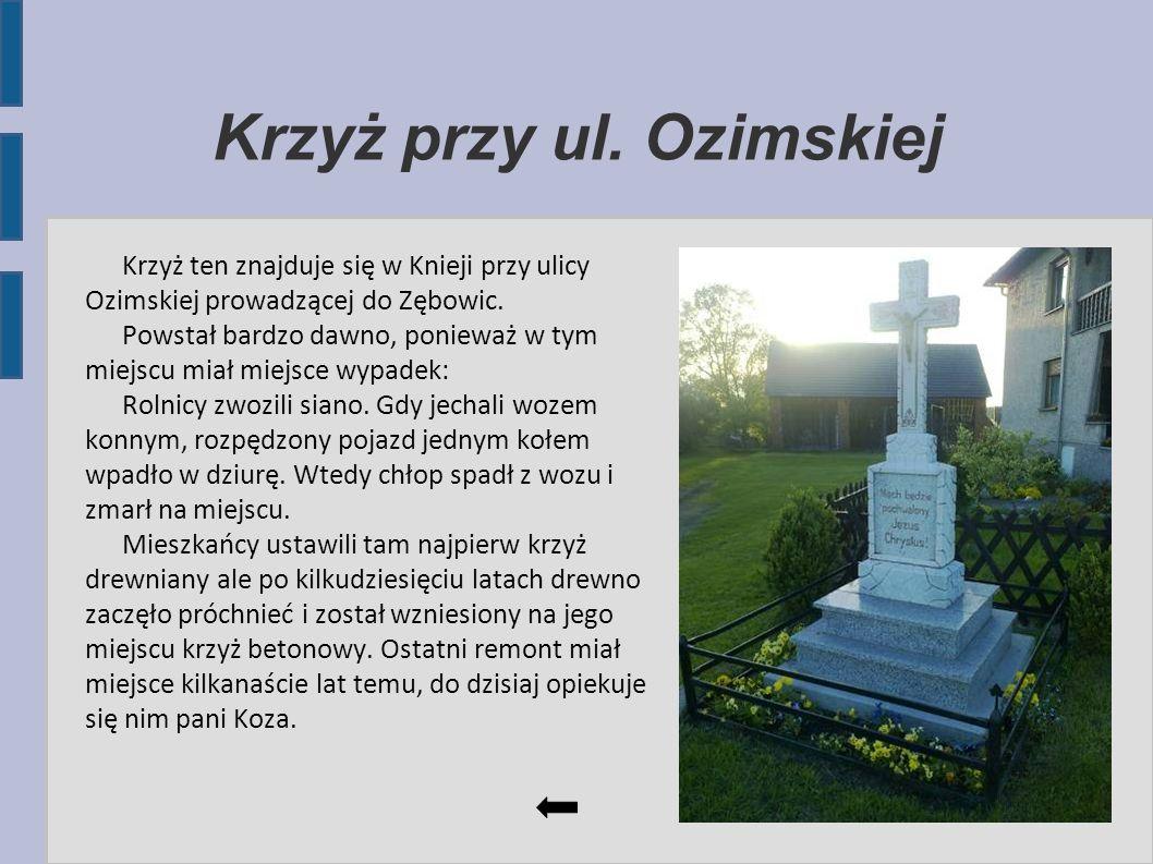 Krzyż przy ul. Ozimskiej Krzyż ten znajduje się w Knieji przy ulicy Ozimskiej prowadzącej do Zębowic. Powstał bardzo dawno, ponieważ w tym miejscu mia