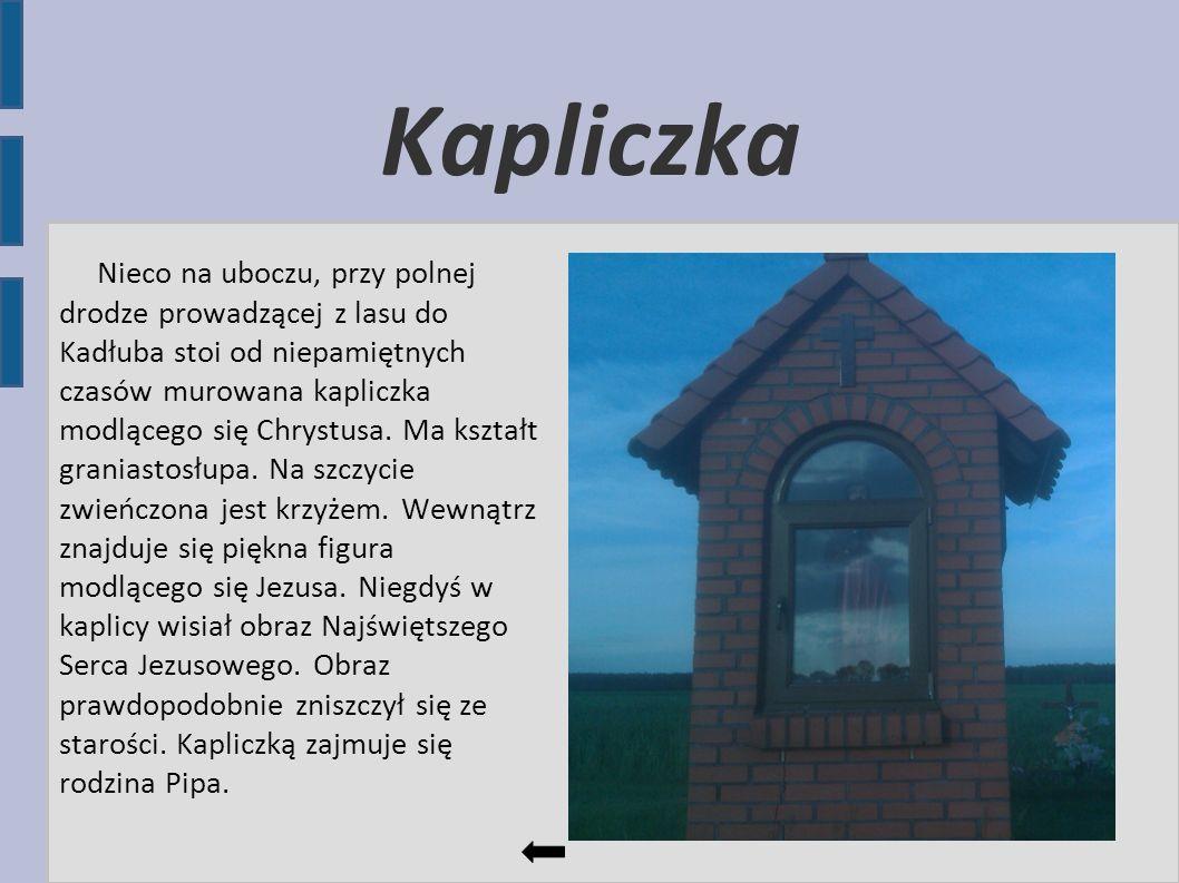 Kapliczka Nieco na uboczu, przy polnej drodze prowadzącej z lasu do Kadłuba stoi od niepamiętnych czasów murowana kapliczka modlącego się Chrystusa. M