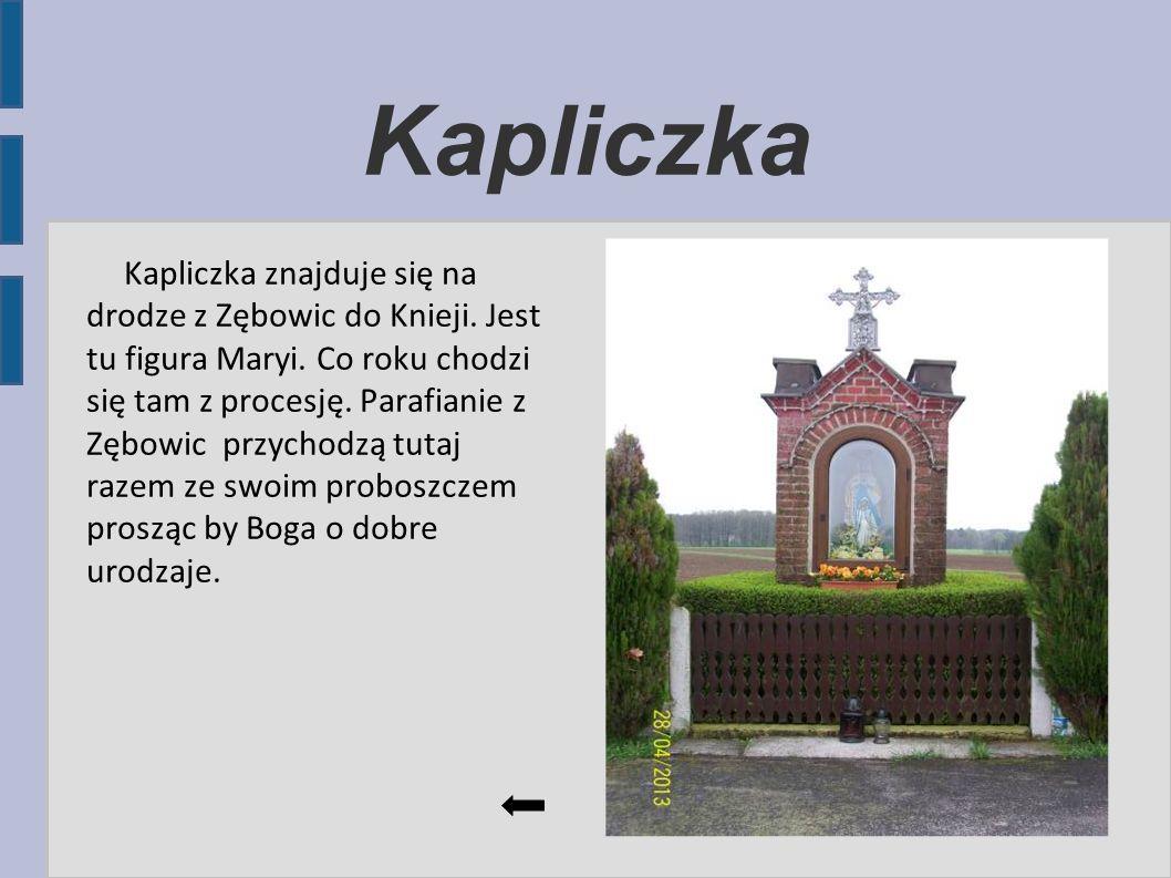 Kapliczka Kapliczka znajduje się na drodze z Zębowic do Knieji. Jest tu figura Maryi. Co roku chodzi się tam z procesję. Parafianie z Zębowic przychod