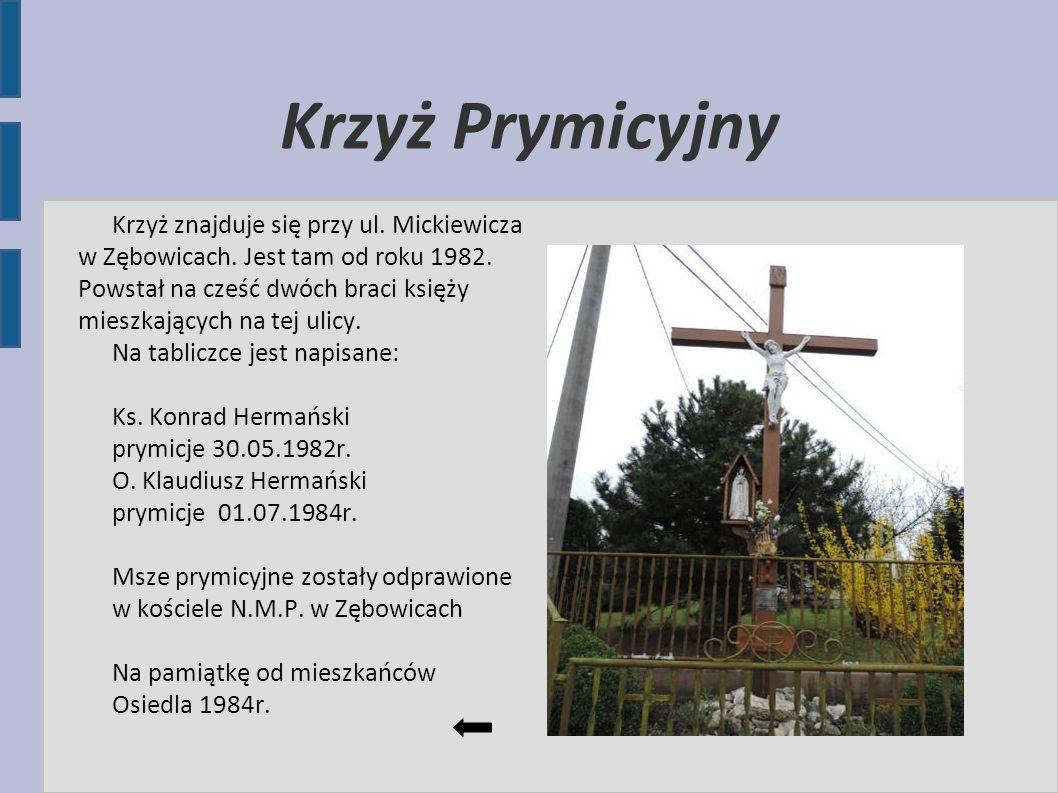 Krzyż Prymicyjny Krzyż znajduje się przy ul. Mickiewicza w Zębowicach. Jest tam od roku 1982. Powstał na cześć dwóch braci księży mieszkających na tej