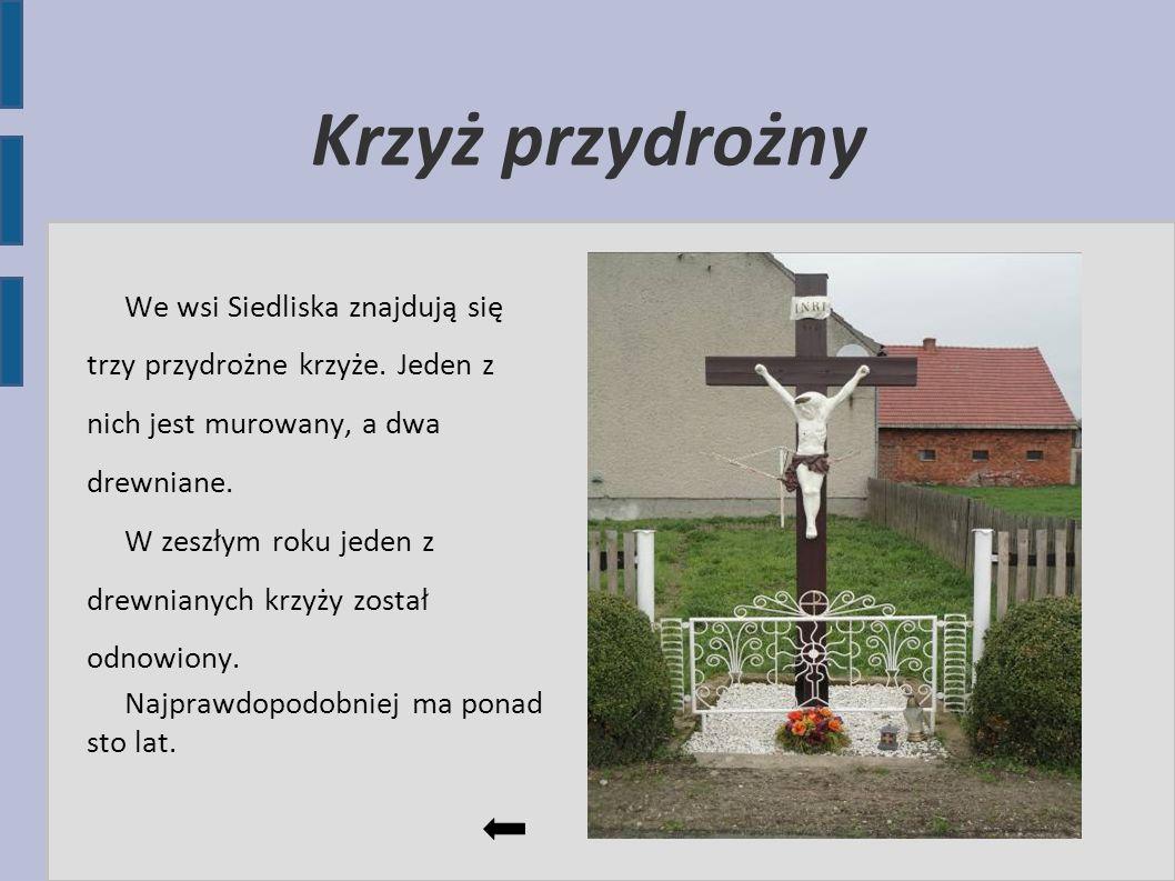 Krzyż przydrożny We wsi Siedliska znajdują się trzy przydrożne krzyże. Jeden z nich jest murowany, a dwa drewniane. W zeszłym roku jeden z drewnianych