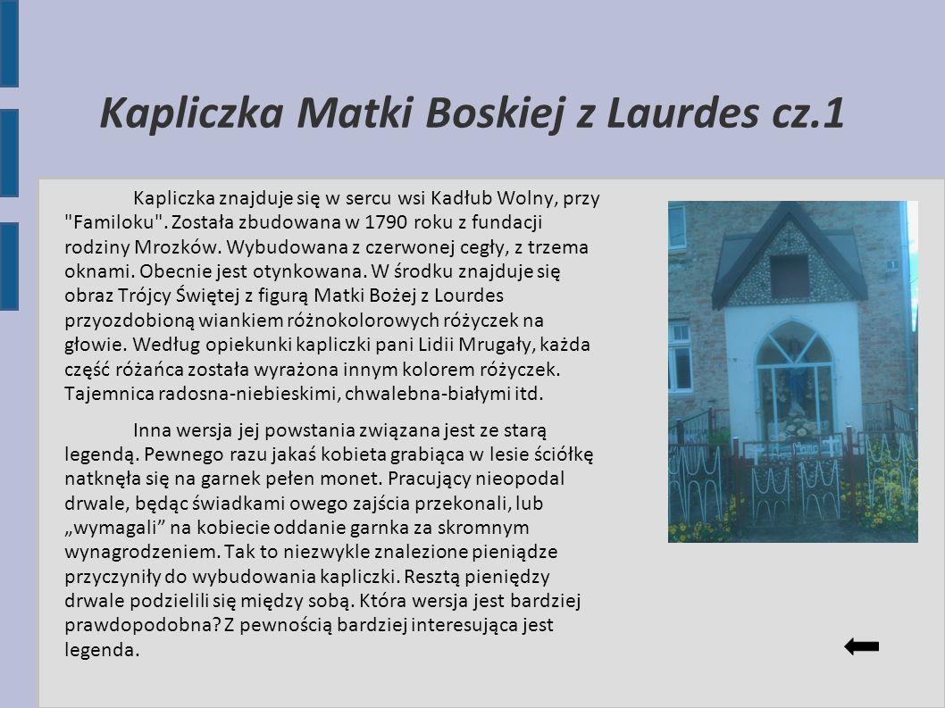 Kapliczka Matki Boskiej z Laurdes cz.1 Kapliczka znajduje się w sercu wsi Kadłub Wolny, przy