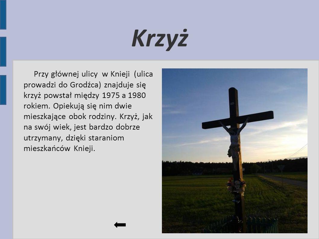 Krzyż Przy głównej ulicy w Knieji (ulica prowadzi do Grodźca) znajduje się krzyż powstał między 1975 a 1980 rokiem. Opiekują się nim dwie mieszkające