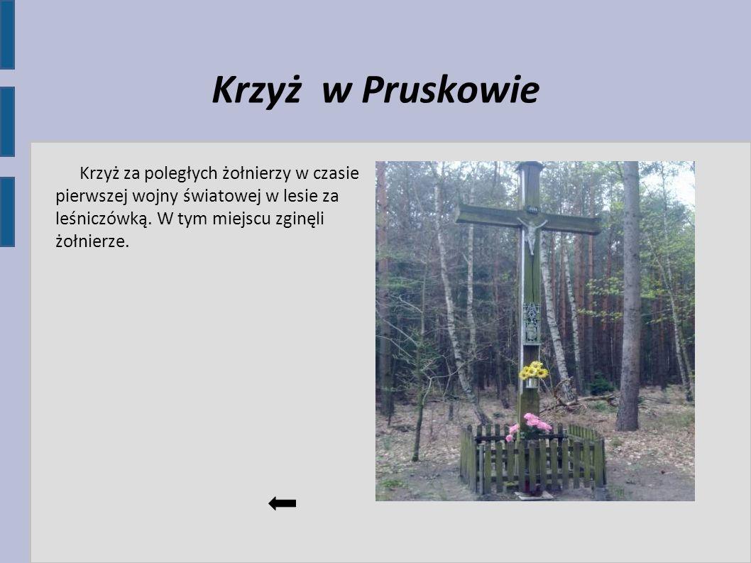 Krzyż w Pruskowie Krzyż za poległych żołnierzy w czasie pierwszej wojny światowej w lesie za leśniczówką. W tym miejscu zginęli żołnierze.