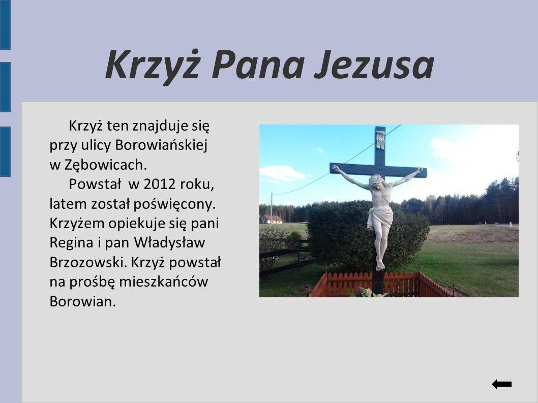 Krzyż Pana Jezusa Krzyż ten znajduje się przy ulicy Borowiańskiej w Zębowicach. Powstał w 2012 roku, latem został poświęcony. Krzyżem opiekuje się pan